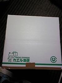 【OD3】カエル急便段ボール( 写真アリ)