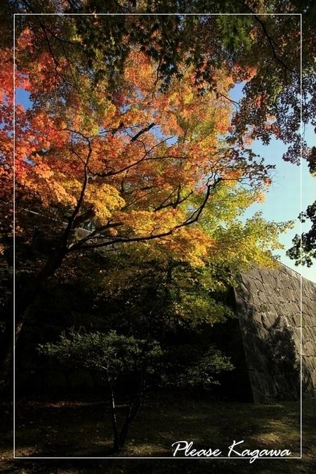 日本シリーズ東北で初の優勝が決まりますね☆☆PLEASE☆秋冬最旬☆HAIRでお洒落を楽しもう♪プリーズ☆加川