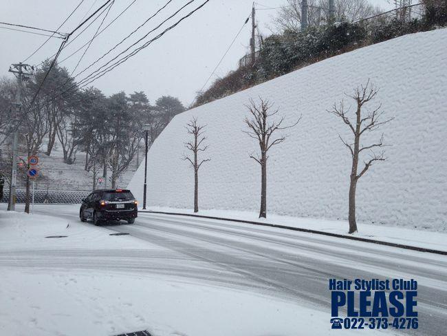 今日は大雪! プリーズ☆は元気に営業中です♪ プリーズ☆加川