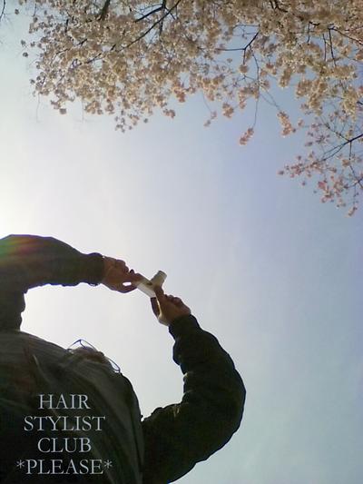 PLEASE☆桜♪春をさがしに♪ プリーズ☆加川