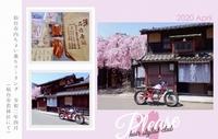 PLEASE☆春風にさそわれて♪桜♪ プリーズ☆加川 2020/04/04 15:58:21