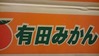 有田のみかん