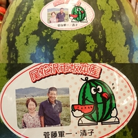 尾花沢すいか!!
