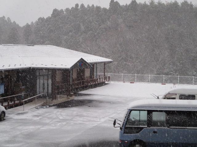 今季初の積雪