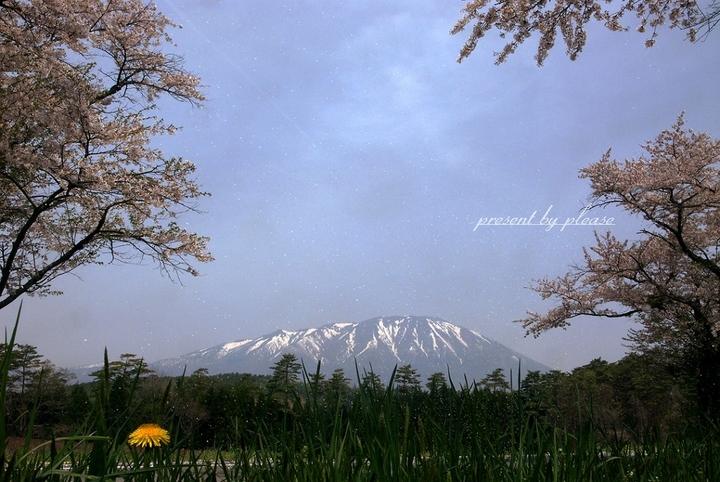 春ツーリングの写真  プリーズ☆加川