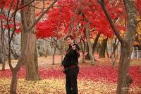 秋、冬ヘア☆  モテ髪が変わった。      仙台☆プリーズ