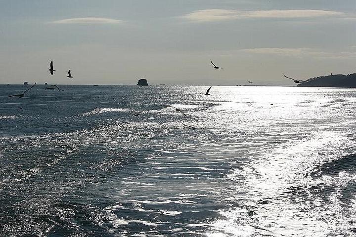 海も いいよね☆     あはは♪