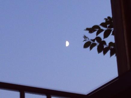 「月見カフェ」開催のご案内