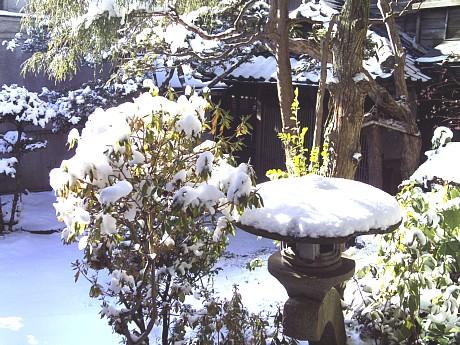 平成23年度(平成24年)2月の亀井邸開館に関するご案内