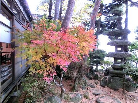紅葉風景2012 ~亀井邸~