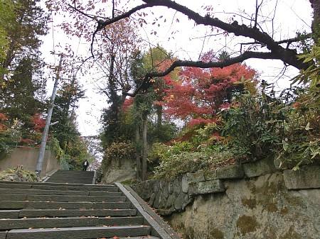 紅葉風景2012 ~鹽竈神社 東参道(通称:裏坂)~