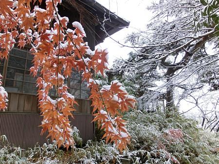 紅葉風景2012 ~名残の雪景色~ と宣伝
