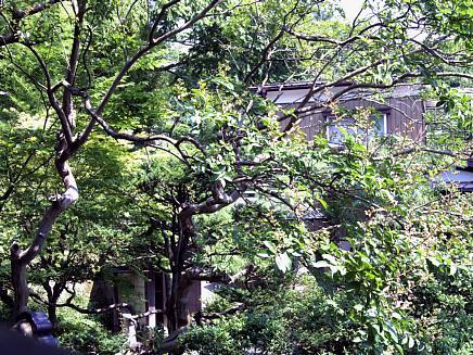亀井邸からのお知らせ ~夏季休館について~