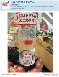 甘いトマトは水に沈む・・・はずなんだけど