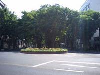 仙台市 青葉区 西公園付近