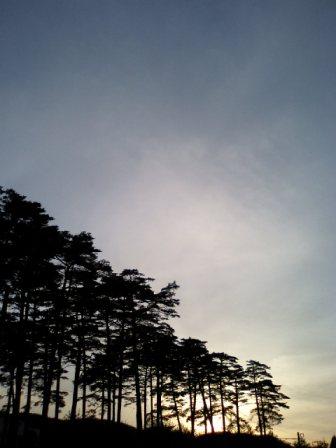 松ノ樹ばかりが♪