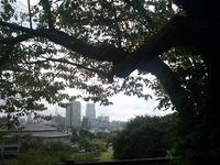 今朝の散歩(川内萩ホール付近)
