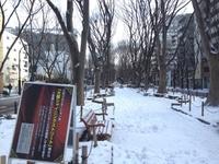 今朝の散歩(定禅寺通り)
