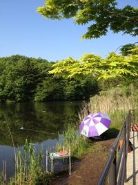 日曜日の散歩(うどう沼公園)