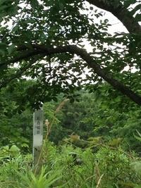 松森城(鶴ヶ城)跡