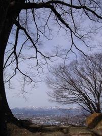 昨日の散歩♪