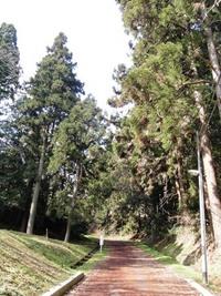 今日の散歩(仙台城 清水門跡)♪