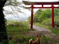 小野田町「薬莱山」♪