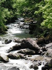 春の奥おおえ柳川温泉まつり♪