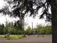 今朝のお散歩(西公園)