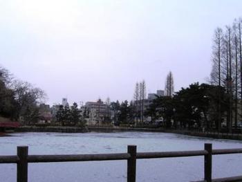 今日の仙台市そして・・・♪