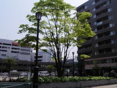 PM:仙台♪