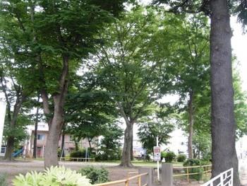 宮千代公園