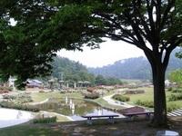 東沢バラ公園:横♪