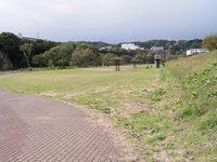 今朝の散歩(澱橋付近)