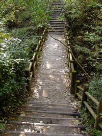 今朝の散歩(水の森公園付近)