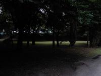宮城野原運動公園