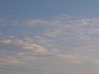 Good Morning Sendai
