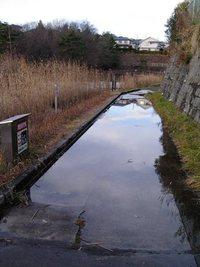 今朝の散歩(うどう沼公園付近)