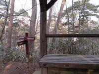 今朝の散歩(水の森公園)