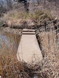 うどう沼公園