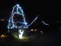 我家のクリスマスイルミネーション