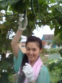 ☆恒例!野菜収穫!!☆