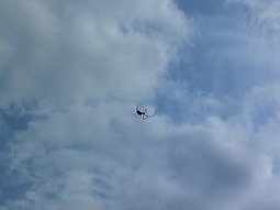 雲に浮かぶクモ!?