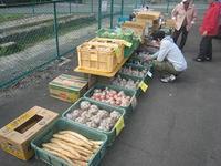 11月13日(土) まちなか農園収穫祭
