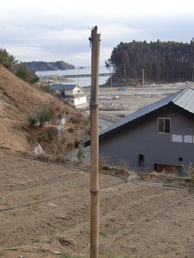 歌津町の到達水位は23m以上