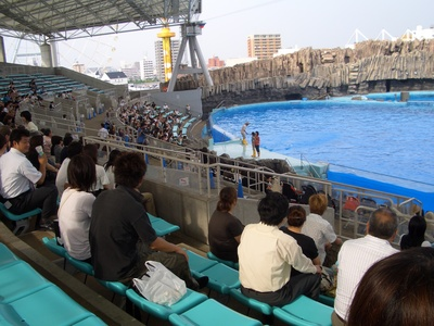 名古屋港水族館と置き場のない写真