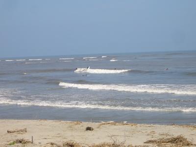 サーファーとゴミ海岸