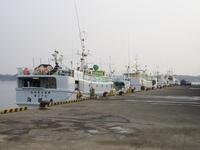 漁港を観光スポットに