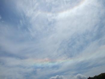 虹のような・・・