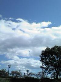 お天気ですね♪